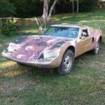 Ultra RARE 1967 Ferrer GT